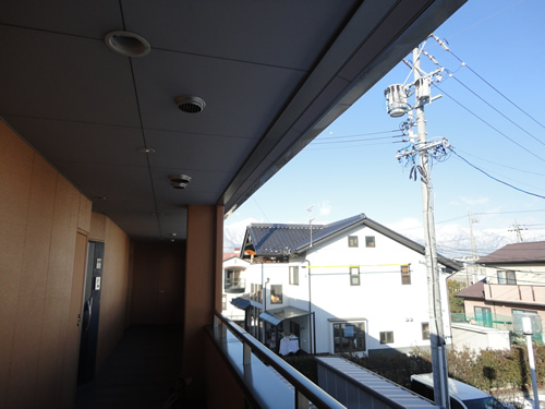 20120203-4.JPG