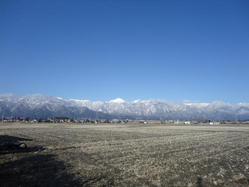 20120331-5.JPG